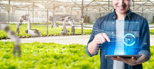 Asian farmer growing plant with IOT based smart agriculture monitoring system, automate sensor robotic farming industry future internet of thing technology.